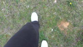 Pies con los zapatos blancos que caminan en el campo metrajes
