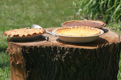 Pies Cooling on Tree Stump Royalty Free Stock Images