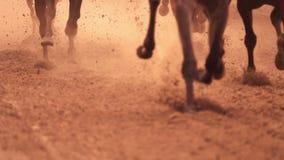 Pies de la carrera de caballos