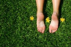 Pies de la hierba Imágenes de archivo libres de regalías