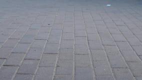 Pies de la muchedumbre del concepto con el primer de los zapatos Gente anónima que camina en la calle almacen de video