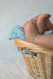 Pies del bebé Fotografía de archivo libre de regalías