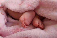 Pies del bebé Foto de archivo