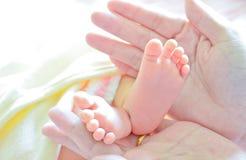 Pies del bebé de la explotación agrícola de la madre imagen de archivo libre de regalías