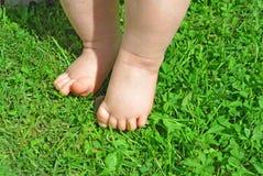 Pies del bebé en la hierba Foto de archivo