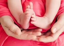 Pies del bebé en las manos de la madre Imagen de archivo
