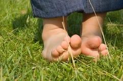 Pies del bebé en una hierba verde Imagen de archivo libre de regalías