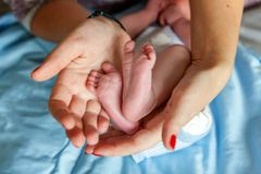 pies del bebé y manos de la madre Foto de archivo