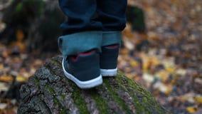 Pies del muchacho paso a paso que caminan en el bosque caido y el salto - cierre del otoño de la clave del árbol encima de la cám almacen de metraje de vídeo