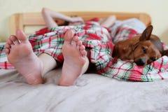 Pies del ` s del adolescente en cama y perro Fotos de archivo