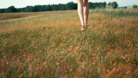 Pies del ` s de la mujer que caminan sobre campo de hierba verde almacen de video
