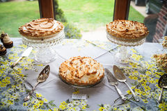 Three delicious pies Stock Photo