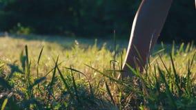 Pies descubiertos en hierba verde almacen de video