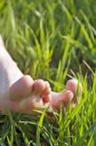 Pies descubiertos en la hierba Foto de archivo libre de regalías