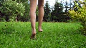 Pies desnudos de la chica joven que caminan y que corren en hierba verde almacen de video