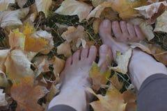 Pies desnudos en las hojas de otoño Imagen de archivo