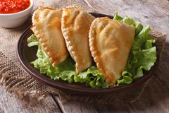 Pies empanadas on a plate with lettuce and sauce, horizontal Royalty Free Stock Photos