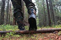 Pies en los zapatos que caminan en el bosque Imágenes de archivo libres de regalías