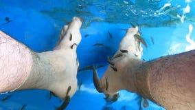 Pies en un balneario de los pescados metrajes