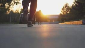 Pies femeninos de las piernas que corren en el parque durante puesta del sol hermosa Ejercicio de concepto 3840x2160 almacen de metraje de vídeo
