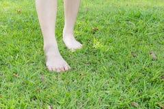 Pies femeninos de lesión en la hierba Imagen de archivo libre de regalías