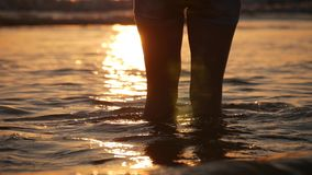 Pies femeninos del turista del caminante que caminan descalzo en orilla Las piernas de la mujer joven que van a lo largo del océa almacen de metraje de vídeo