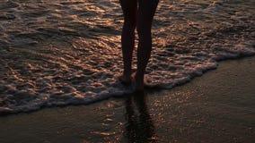 Pies femeninos del turista del caminante que caminan descalzo en orilla Las piernas de la mujer joven que van a lo largo del océa metrajes