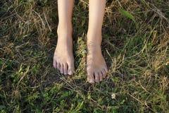 Pies femeninos desnudos en una hierba Fotografía de archivo libre de regalías