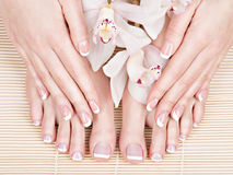 Pies femeninos en el salón del balneario en procedimiento de la pedicura y de la manicura Fotografía de archivo