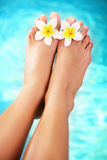 Pies femeninos pedicured hermosos y flowe tropical Fotos de archivo libres de regalías