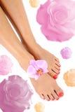 Pies hermosos de pierna con pedicure perfecto del balneario Imágenes de archivo libres de regalías
