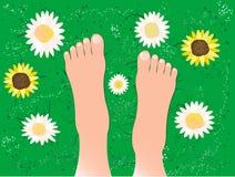 Pies hermosos en la hierba Fotografía de archivo libre de regalías