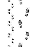 Pies humanos y patas del perro Fotos de archivo