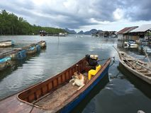 Pies i jego łódź fotografia stock