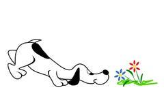 Pies I kwiaty Zdjęcie Royalty Free