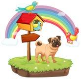 Pies i tęcza Obrazy Royalty Free