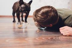 Pies je jedzenie gospodarz je psiego jedzenie poj?cie przyci?ga? interes w suchym jedzeniu zwierz? domowe ?ywieniowy problem fotografia royalty free