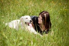 pies kochający obraz stock