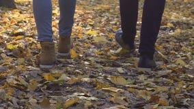 Pies masculinos y femeninos de parque lentamente que camina en hojas de otoño, paseo de la mañana, fecha almacen de video