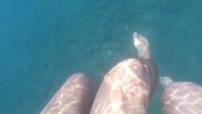 Pies masculinos y femeninos que nadan junto bajo el agua en el mar durante vacaciones de verano Piernas de pares jovenes debajo d almacen de video