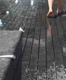 Pies mojados Imagen de archivo libre de regalías