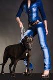 Pies na łańcuchu który utrzymuje kobiety obrazy royalty free