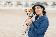 Pies na gospodarza ` s rękach zdjęcie royalty free