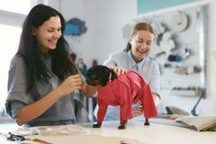 Pies odziewa Kobieta krawczyna Jest ubranym kostium Na zwierzęciu domowym fotografia stock
