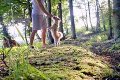 Pies prowadzi dochodzenie mężczyzna w lesie przy zmierzchem obraz royalty free