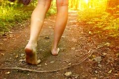 Pies que caminan a lo largo del cierre de la trayectoria de bosque encima de la foto Imagenes de archivo