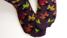 Pies que llevan calcetines del pavo Fotos de archivo libres de regalías