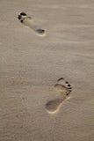 Pies que recorren en la playa Fotografía de archivo libre de regalías