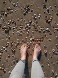 Pies que se colocan en una playa de Sandy con las conchas marinas Foto de archivo libre de regalías