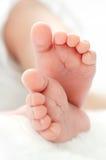 Pies recién nacidos Fotografía de archivo libre de regalías